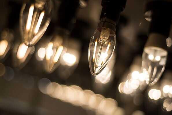 Bulb Close Up
